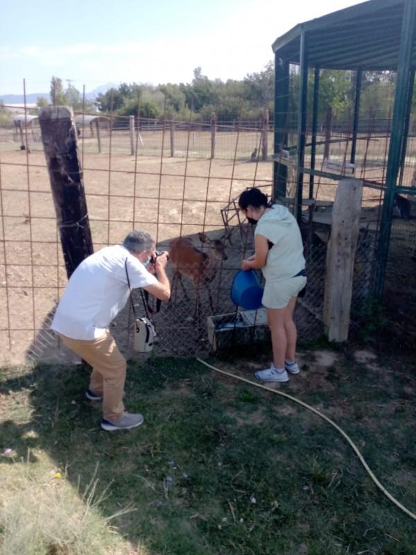 Emues y Luca