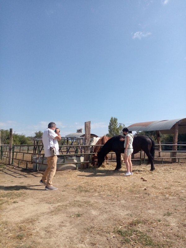 Luca caballo